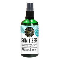 PUNCH Health Sanitizer käte desinfitseerimisvahend, Pihustiga (100 ml)