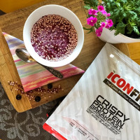 ICONFIT Crispy Protein Breakfast, Kookose-vaarika (500 g / 10 Toidukorda)