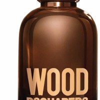 Dsquared2 Wood (Tualettvesi, meestele, 100ml)