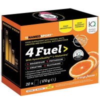 NamedSport 4Fuel (20 portsjonpakki)