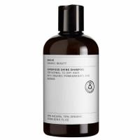 Evolve Superfood sära andev šampoon normaalsetele ja kuivadele juustele (250 ml)